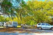 Photo: REED BINGHAM STATE PARK - Camping
